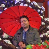 पल्लव शर्मा